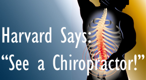 Severna Park chiropractic for back pain relief urged by Harvard