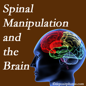 Back And Neck Care Center [presents research on the benefits of spinal manipulation for brain function.